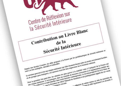 livre blanc sécurité intérieure