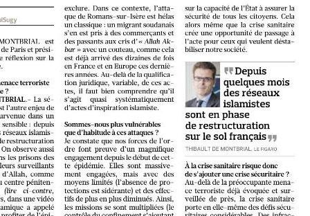 """Interview de Thibault de Montbrial dans Le Figaro: """" La sécurité intérieure est l'autre enjeu de cette épidémie"""""""